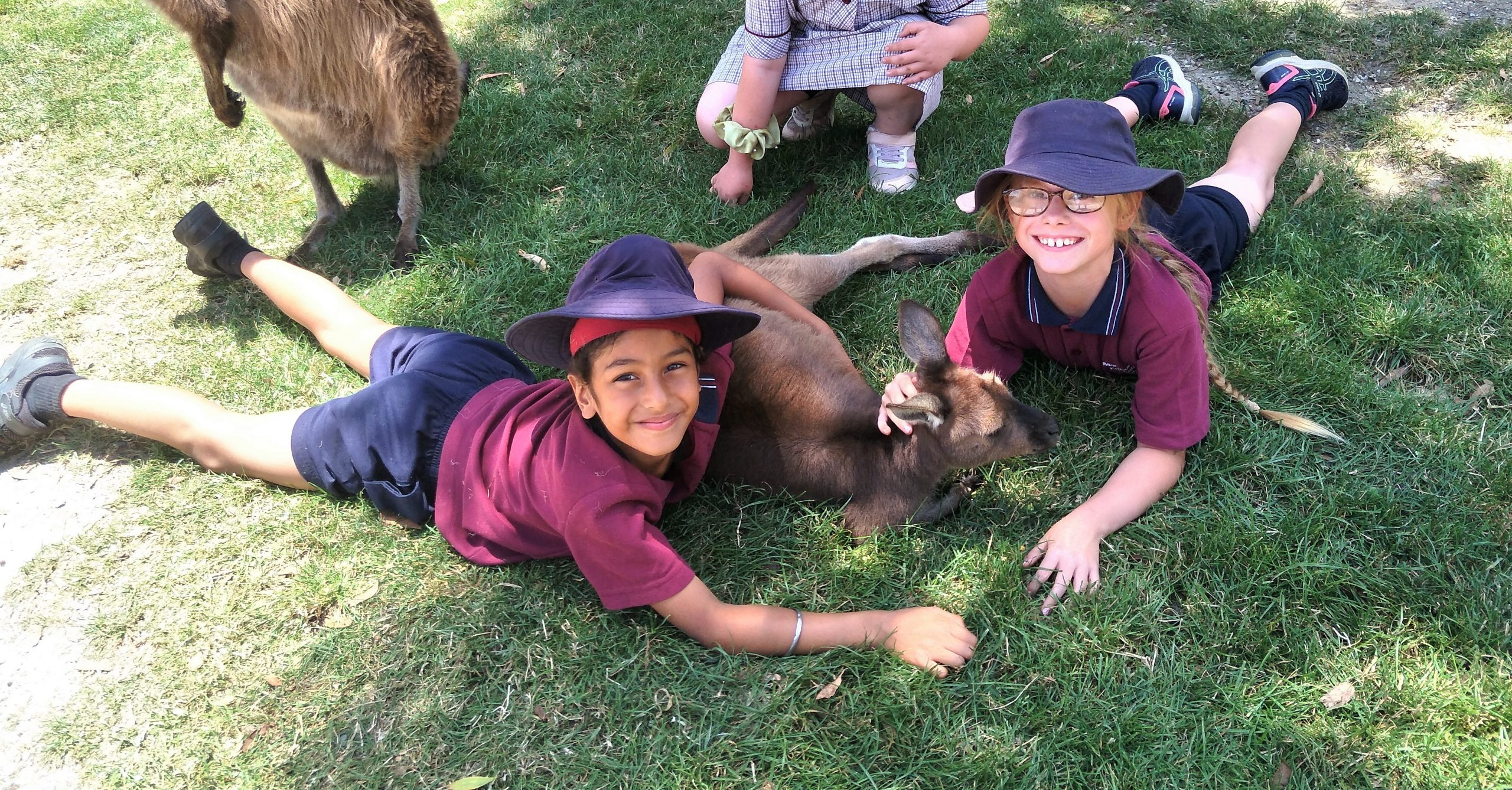 Ballarat Wildlife Park 1 (2)